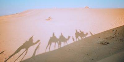 backpack_camel